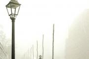 L'ombra del vento [Carlos Ruiz Zafón]
